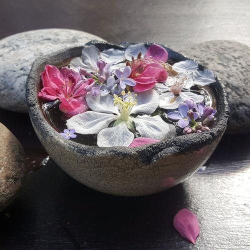 Werder Havel Blüten